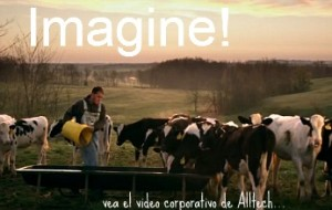 Imagine! …. vídeo corporativo de Alltech